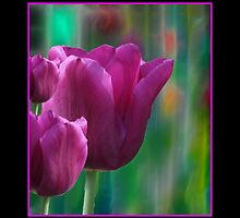 Pink Tulips by ARTforcancer