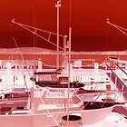Bodega Bay Red by margaret986