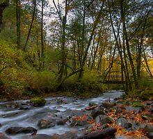 Bridge over Bridal Veil Falls Creek by davidgnsx1