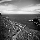 Cornwall Path by Nadean Brennan