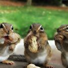 Say &quot;Cheese&quot; (or Peanuts) by Lori Deiter