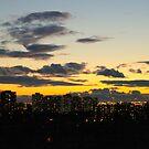 My Skyline.. by Larry Llewellyn