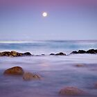 Lunar Light - Friendly Beaches, Tasmania by Liam Byrne