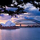 Sydney Sunset by Nadean Brennan