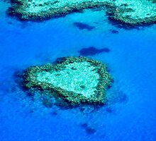 Heart Reef, Whitsundays by Nadean Brennan