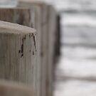 Moana Beach, South Australia 3 by Topher Webb