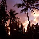 Cultural Village in New Caledonia by Equinox