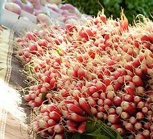 radishes in the sun by emma3