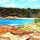 Bird's Eye View, Mill Beach, Australia by © Linda Callaghan