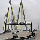Fred Hartman Bridge by Susan Russell