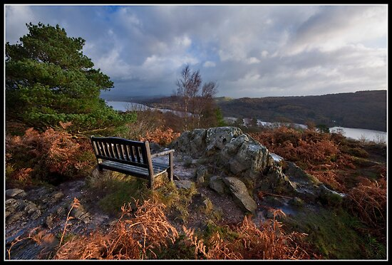 Jason's bench!! ...aka Pew with a view! by Shaun Whiteman