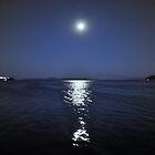 blue moon by titabia