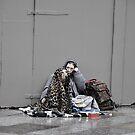 The faithful mate by STEPHANIE STENGEL | STELONATURE PHOTOGRAHY
