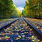 Fall On the Tracks by Kathy Weaver