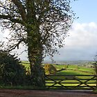 Southcoombe, Nr Crediton, Devon by Squealia