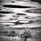 Spotted Lake in Black & White by Tara  Turner