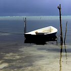 A Boat To Go-Caye Caulker,Belize by graeme edwards