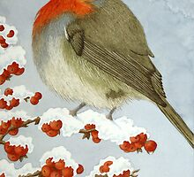 aquartistic - beautiful birds by veronique cole by aquartistic