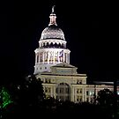 Texas State Capitol Building - Night by Dave Martin