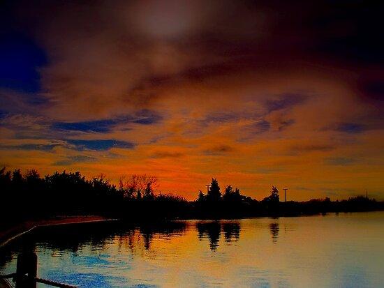 November on  the Bay  by Rick  Todaro