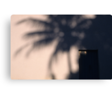 Palm shadow against a wall Canvas Print