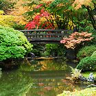 Autum Zen by worldtripper