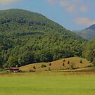 Barn in Poor Valley 2 by Linda Costello Hinchey