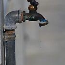 Drip, Drop by Virginia N. Fred