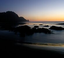 Heceta Head #3 by Allan  Erickson