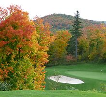 Autumn golf by Rachel Gagne