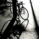 Shadow Play, Circular Quay by gail anderson
