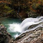 Falls Creek Falls II by Lisa G. Putman