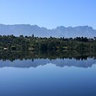 The Magnificent Cederberg by Fineli