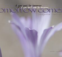 Tomorrow Comes © by Vicki Ferrari