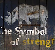 The Symbol of strength by Syd Winer