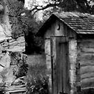 Outhouse by Mark Van Scyoc