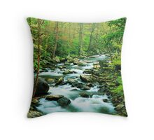MIDDLE PRONG LITTLE RIVER,SPRING  Throw Pillow