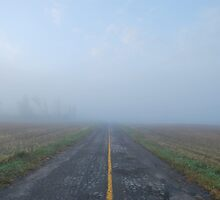Fog, Rennie Side Road by dduchow