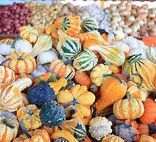 Fall Gourds by rnrphoto98