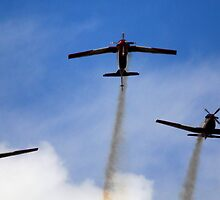 Smokin - the Roulettes on display by GeoffSporne