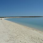 Shell Beach, Shark Bay, Western Australia by Philippa Ryan