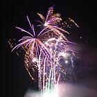Fireworks 2009 by stephen denton