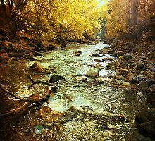 American Fork River - Downstream by Ryan Houston