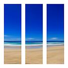 Summertime Blues - Triptych by Kitsmumma