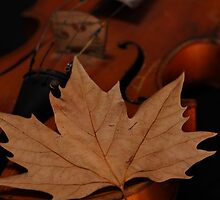 The music of Autumn by Viktor Bors