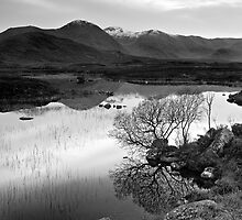 Rannoch Moor - The First Of The Snows by Kevin Skinner