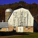 a barn along the way by Lynne Prestebak