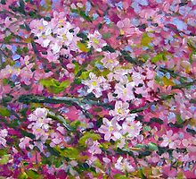 Cherry Blossoms by Norman Kelley