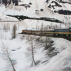 Train to Anchorage by DianaC