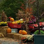 Fall Wagon by jeanlphotos